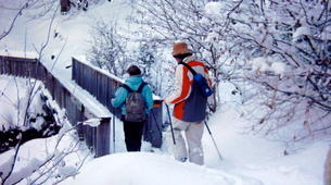 Snowshoeing-La Mongie-Snowshoeing excursion in Campan Valley from La Mongie-4
