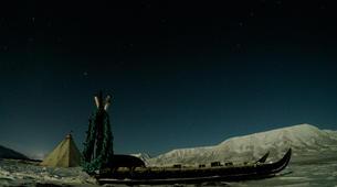 Chiens de traîneau-Svalbard-Northern lights mushing excursion in Longyearbyen, Svalbard-2