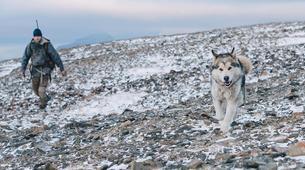 Dog sledding-Svalbard-Private 5 day mushing expedition in Longyearbyen, Svalbard-2
