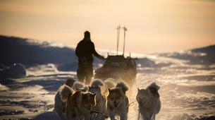 Dog sledding-Svalbard-Private full day mushing excursion in Longyearbyen, Svalbard-6