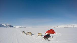 Dog sledding-Svalbard-Private 5 day mushing expedition in Longyearbyen, Svalbard-8