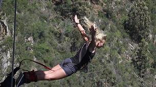 Bungee Jumping-Plettenberg Bay-Africa's highest bridge bungee, 216m from Bloukrans Bridge-2