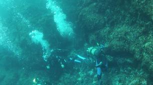 Scuba Diving-Hendaye-Scuba diving PADI courses in Hendaye-4