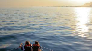 Experiences Wildlife-Kogelberg Nature Reserve-Southern right whale watching in Walker Bay-1