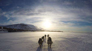 Dog sledding-Svalbard-Private full day mushing excursion in Longyearbyen, Svalbard-1