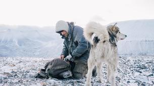 Dog sledding-Svalbard-Private 8 day mushing expedition in Longyearbyen, Svalbard-3