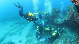 Plongée sous-marine-Costa Adeje, Tenerife-Adventure dives in Costa Adeje, Tenerife-3