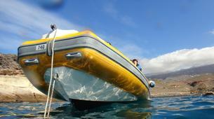 Plongée sous-marine-Costa Adeje, Tenerife-Snorkelling excursion in Costa Adeje, Tenerife-2