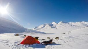 Dog sledding-Svalbard-Private 5 day mushing expedition in Longyearbyen, Svalbard-9