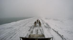 Dog sledding-Svalbard-Private 8 day mushing expedition in Longyearbyen, Svalbard-4