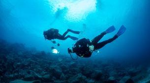 Scuba Diving-Puerto del Carmen, Lanzarote-First scuba dive in Playa Chica, Puerto del Carmen-5