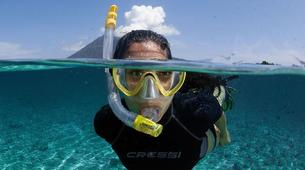 Plongée sous-marine-Costa Adeje, Tenerife-Snorkelling excursion in Costa Adeje, Tenerife-1