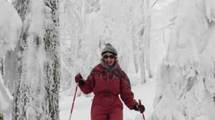 Snowshoeing-Morzine, Portes du Soleil-Snowshoeing excursion in Morzine, Portes du Soleil-5