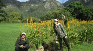 Hiking / Trekking-Cape Town-Hiking excursions up Table Mountain, Lion's Head & Devil's Peak-7