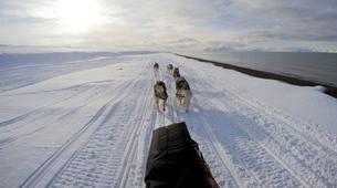 Dog sledding-Svalbard-Private 5 day mushing expedition in Longyearbyen, Svalbard-4