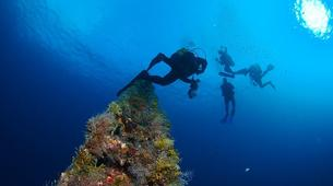 Plongée sous-marine-Costa Adeje, Tenerife-Adventure dives in Costa Adeje, Tenerife-2
