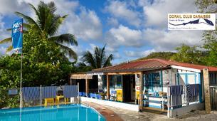 Plongée sous-marine-Les Trois-Îlets-Baptême de Plongée à l'Anse à l'Âne, Martinique-6