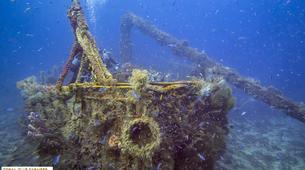 Plongée sous-marine-Les Trois-Îlets-Baptême de Plongée à l'Anse à l'Âne, Martinique-4