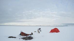 Dog sledding-Svalbard-Private 5 day mushing expedition in Longyearbyen, Svalbard-7
