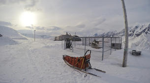 Dog sledding-Svalbard-Private full day mushing excursion in Longyearbyen, Svalbard-3