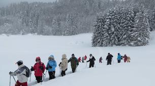 Snowshoeing-Morzine, Portes du Soleil-Snowshoeing excursion in Morzine, Portes du Soleil-4