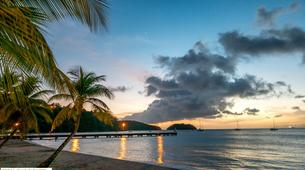 Plongée sous-marine-Les Trois-Îlets-Baptême de Plongée à l'Anse à l'Âne, Martinique-5