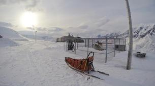 Dog sledding-Svalbard-Private 5 day mushing expedition in Longyearbyen, Svalbard-5