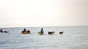Dog sledding-Svalbard-Private 5 day mushing expedition in Longyearbyen, Svalbard-1
