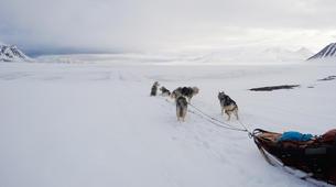 Dog sledding-Svalbard-Private 5 day mushing expedition in Longyearbyen, Svalbard-3