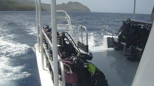 Plongée sous-marine-Les Trois-Îlets-Baptême de Plongée à l'Anse à l'Âne, Martinique-2