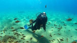 Scuba Diving-Puerto del Carmen, Lanzarote-First scuba dive in Playa Chica, Puerto del Carmen-6