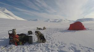 Dog sledding-Svalbard-Private full day mushing excursion in Longyearbyen, Svalbard-5