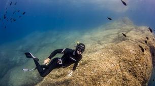 Freediving-Saint-Cyr-sur-Mer-Adventure freedives in Saint-Cyr-sur-Mer-6