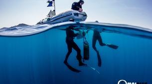 Freediving-Saint-Cyr-sur-Mer-Adventure freedives in Saint-Cyr-sur-Mer-2