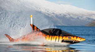 Watercraft-Queenstown-Seabreacher Watercraft tour on Lake Wakatipu, Queenstown-2