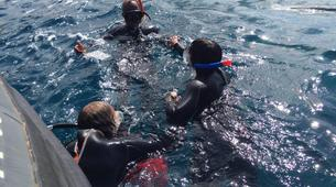 Snorkeling-Costa Adeje, Tenerife-Snorkeling excursion from Playa Las Americas in Costa Adeje-3