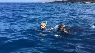 Snorkeling-Costa Adeje, Tenerife-Snorkeling excursion from Playa Las Americas in Costa Adeje-5