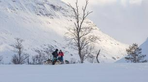 Dog sledding-Tromsø-Full day Arctic dog sledding expeditions, Tromsø-5