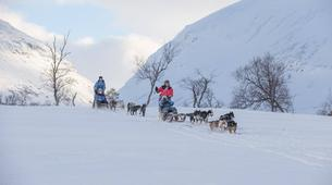 Dog sledding-Tromsø-Full day Arctic dog sledding expeditions, Tromsø-3