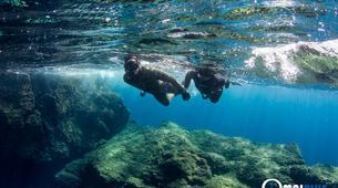 Freediving-Saint-Cyr-sur-Mer-Adventure freedives in Saint-Cyr-sur-Mer-4
