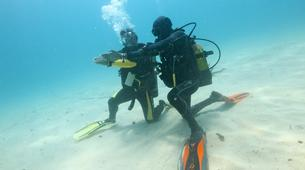 Scuba Diving-Île Sainte-Marie-Scuba diving PADI courses in Nosy Boraha, Madagascar-2