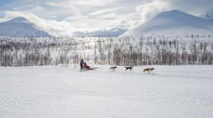 Dog sledding-Tromsø-Full day Arctic dog sledding expeditions, Tromsø-6