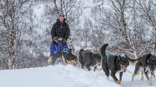 Dog sledding-Tromsø-Full day Arctic dog sledding expeditions, Tromsø-2