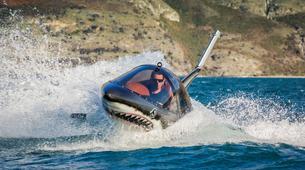 Watercraft-Queenstown-Seabreacher Watercraft tour on Lake Wakatipu, Queenstown-5