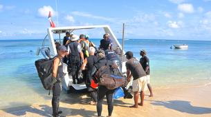 Scuba Diving-Île Sainte-Marie-Fun dive in Nosy Boraha, Madagascar-5