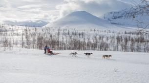 Dog sledding-Tromsø-Full day Arctic dog sledding expeditions, Tromsø-1