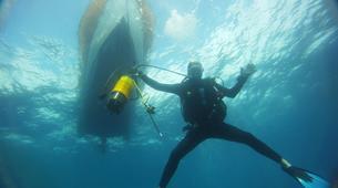 Plongée sous-marine-Antibes-Plongée Exploration à Antibes-6