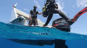 Scuba Diving-Île Sainte-Marie-Scuba diving PADI courses in Nosy Boraha, Madagascar-4