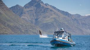 Watercraft-Queenstown-Seabreacher Watercraft tour and boat trip on Lake Wakatipu, Queenstown-2