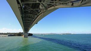 Bungee Jumping-Auckland-Bungee jumping (40 m. Ocean Touch) from Auckland Bridge-4